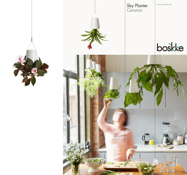 boskke identity designed. Black Bedroom Furniture Sets. Home Design Ideas