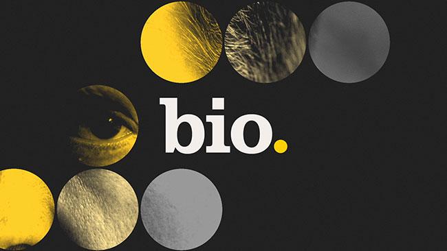bio. channel identity