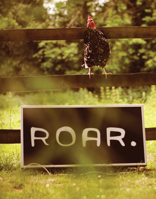 ROAR identity