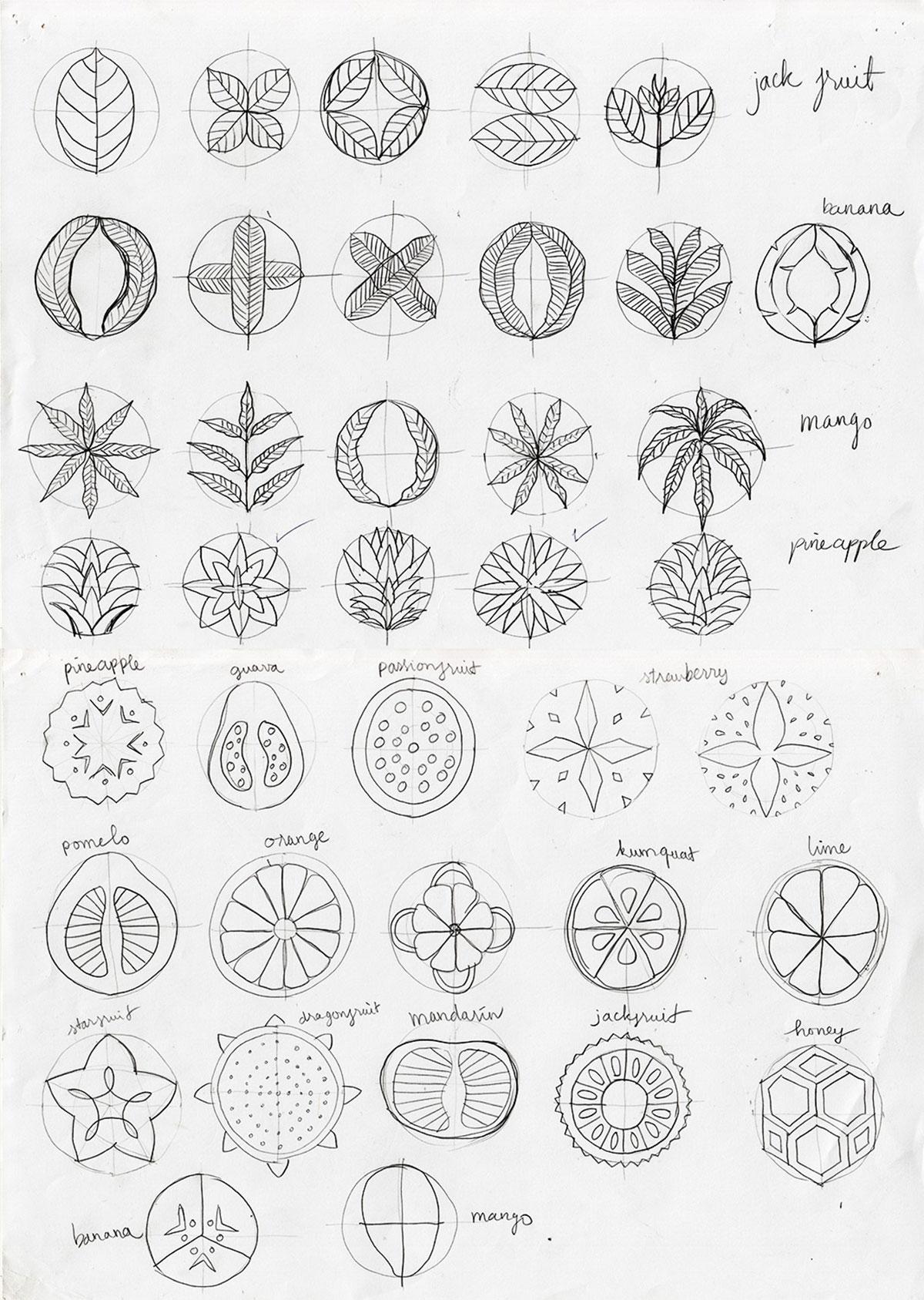 Le Fruit sketches