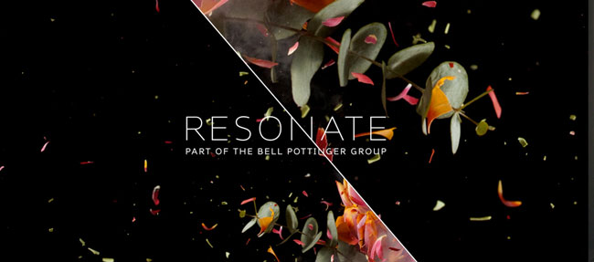 Resonate brand identity design