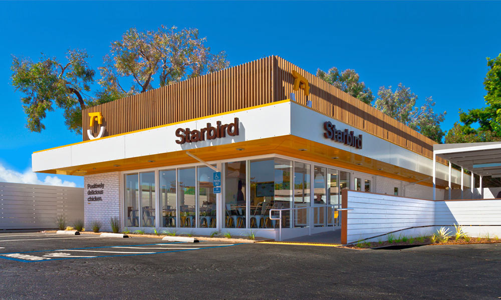Starbird Chicken identity design