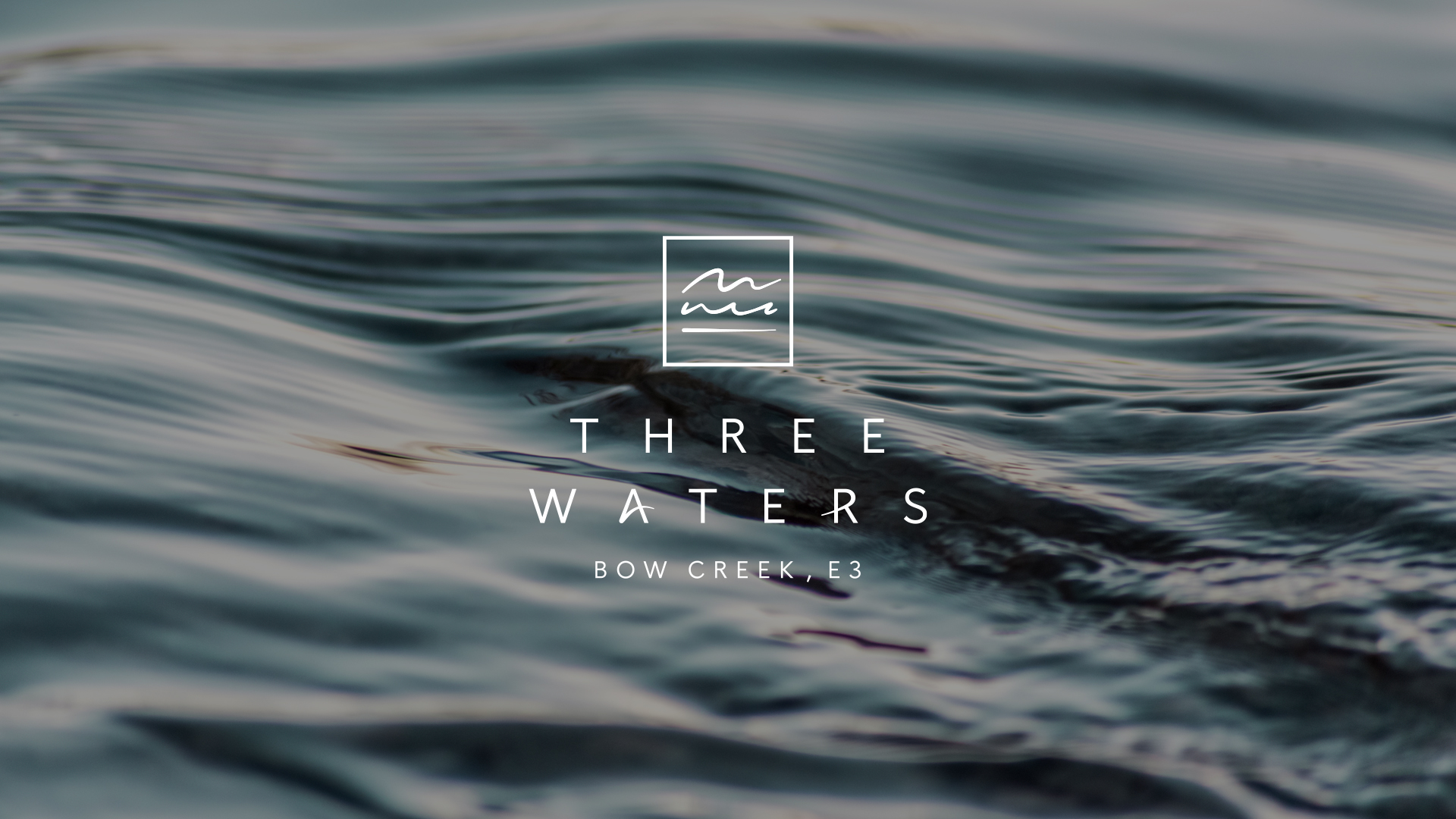 Three Waters logo